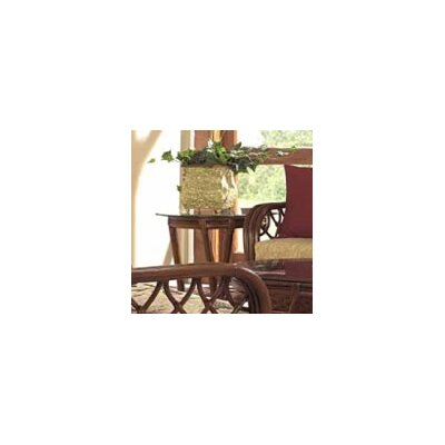 Coco Cay End Table by Boca Rattan