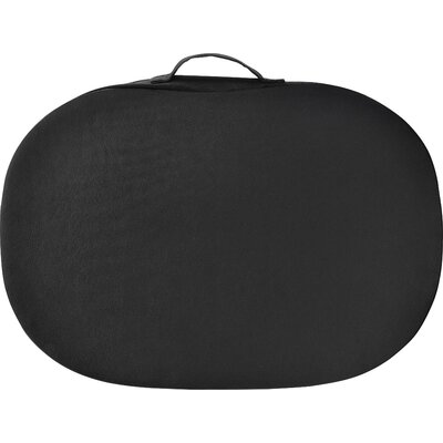 Cushioned Laptop Carrying Case by Altra
