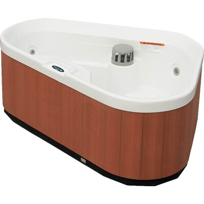 3 person corner 7 jet hot tub spa wayfair