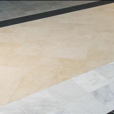 Marfil 18 X 18 Marble Field Tile In Crema Wayfair