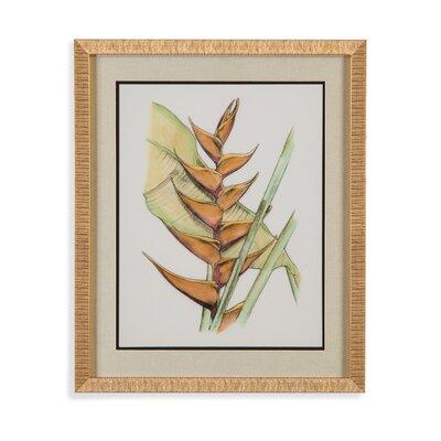 Elegant Tropics III Framed Painting Print by Bassett Mirror
