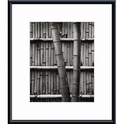 Bamboo and Wall by Jeff Zaruba Framed Photographic Print by Printfinders
