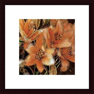 Printfinders 'Apricot Dream I' by Lane Ashfield Framed Painting Print