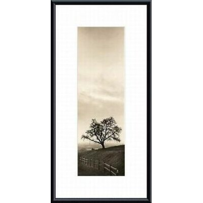 Printfinders 'Sentinel Oak Tree' by Alan Blaustein Framed Photographic Print