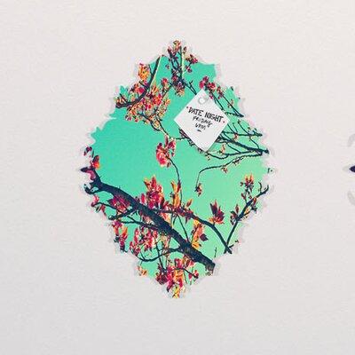 DENY Designs Shannon Clark Summer Bloom Memo Board