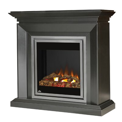 Napoleon Electric Insert Fireplace