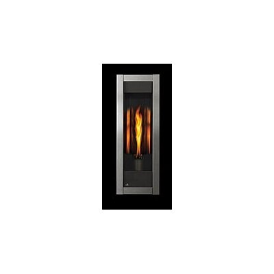 The Torch Direct Vent Gas Fireplace by Napoleon