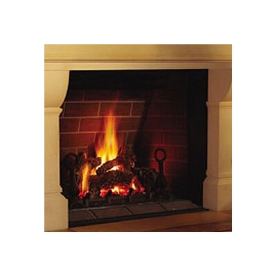 Direct Madison Direct Vent Gas Fireplace by Napoleon