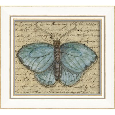 The Artwork Factory Butterfly Framed Graphic Art