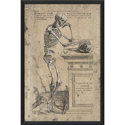 The Artwork Factory Humanis Corporis Ossium Cae Framed Graphic Art