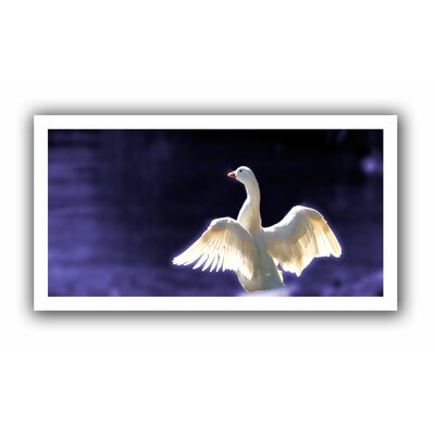ArtWall 'Goosewings' by Lindsey Janich Canvas Poster