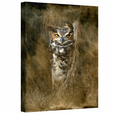 ArtWall 'The Sentry' by David Liam Kyle Photographic Print on Canvas