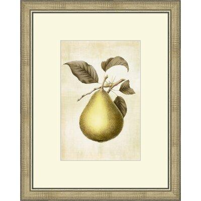 Lovely Fruit II Framed Graphic Art by Melissa Van Hise