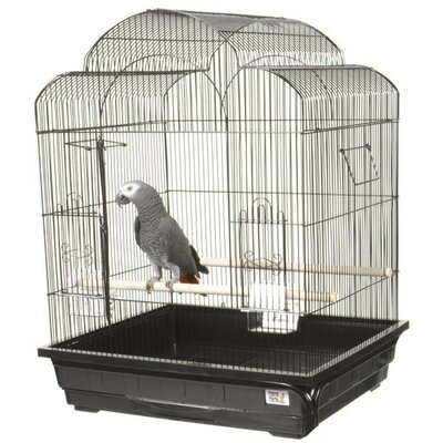 Victorian Small Bird Cage by A&E Cage Co.