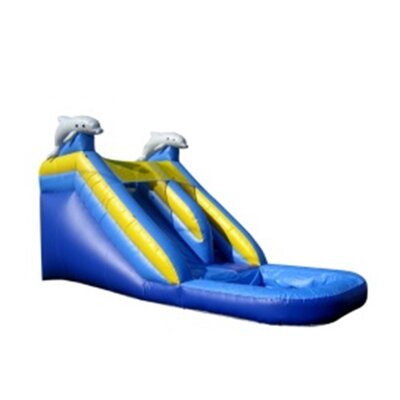 Dolphin Xtreme Wet/Dry Commercial Grade Inflatable Water Slide Product Photo