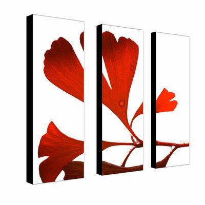 "Trademark Fine Art ""Ginko Drops"" by Philippe Sainte-Laudy Photographic Print 3 Panel Art Set"