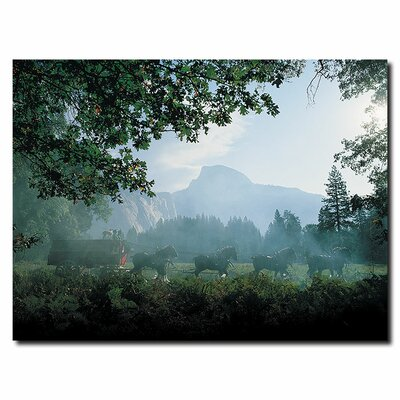 """Trademark Fine Art """"Clydesdales in the Misty Mountains"""" Photographic Print on Canvas"""