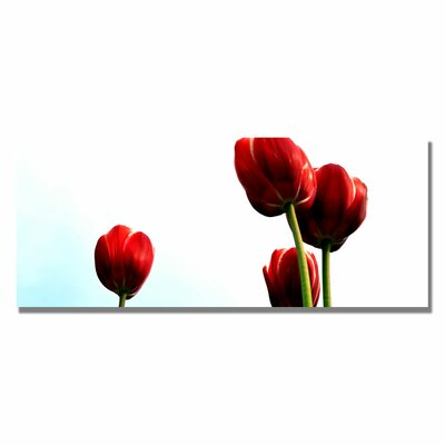 'Four Red Tulips' by Michelle Calkins Photographic Print on Canvas by Trademark Art