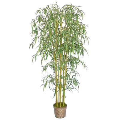 Silk Bamboo Tree in Basket by Laura Ashley Home