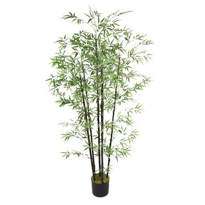 Bamboo Tree in Pot by Laura Ashley Home