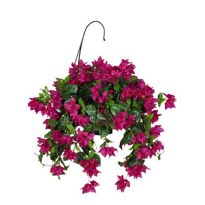 House of Silk Flowers Inc. Bougainvillea Hanging Plant in Basket
