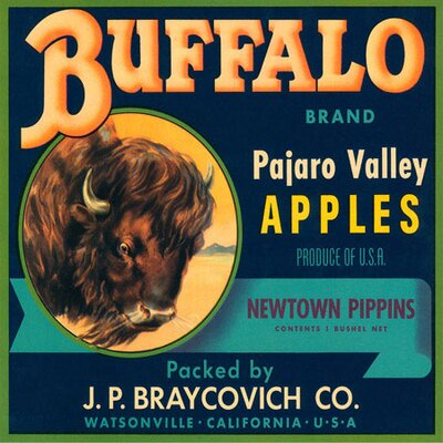 iCanvas Buffalo Brand Apples Vintage Crate Label Canvas Wall Art