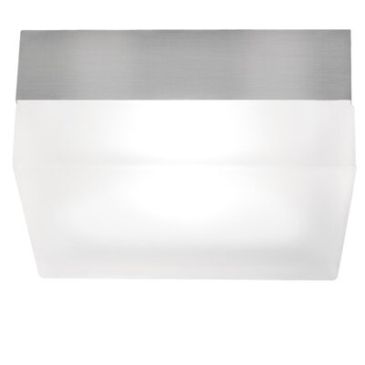 2 Light Flush Mount by Tech Lighting