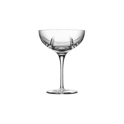 New York Champagne Coupe Glass by Orrefors