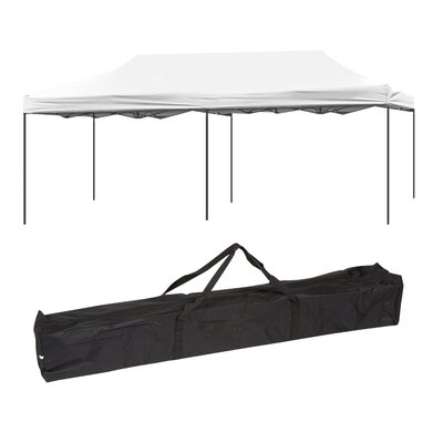 20 Ft. W x 10 Ft. D Canopy by Trademark Innovations