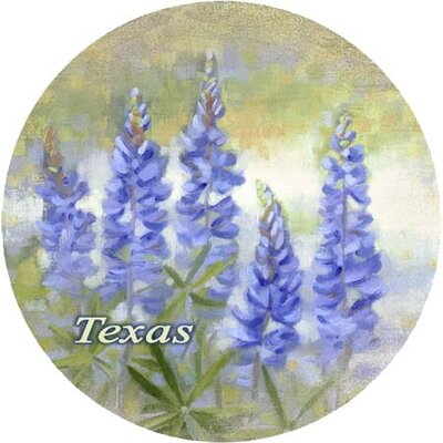 Bluebonnet Texas Coaster by Thirstystone