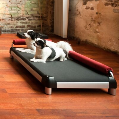 Dog Lounge by Dutch Dog