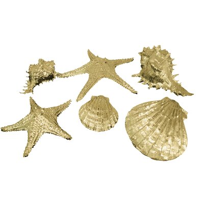 Three Hands Attractive Sea Shell Wall Décor