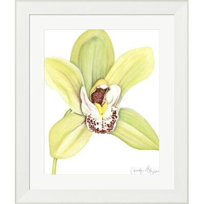 Orchid Beauty II by Jennifer Goldberger Framed Painting Print by Evive Designs