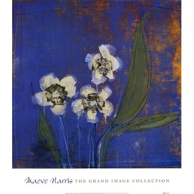 Orchid Study I by Maeve Harris Painting Print by Evive Designs