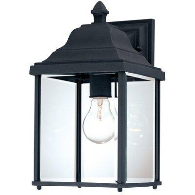 Dolan Designs Charleston 1 Light Wall Lantern