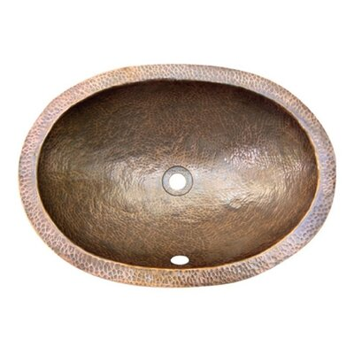 Hammerwerks Flat Lip Ellipse Bathroom Sink by Houzer
