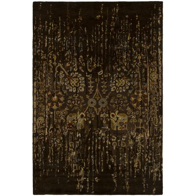 Spring Brown Area Rug by Chandra