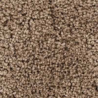 Bella Textured Contemporary Shag Brown Area Rug by Chandra
