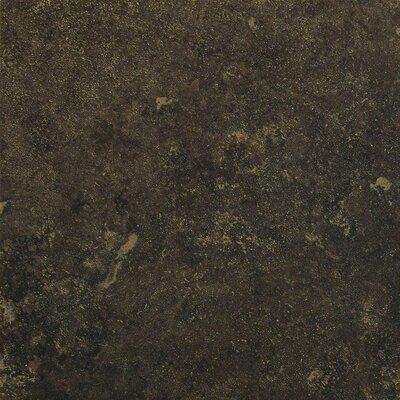 "Shaw Floors Lunar 12"" x 12"" Porcelain Field Tile in Graphite"