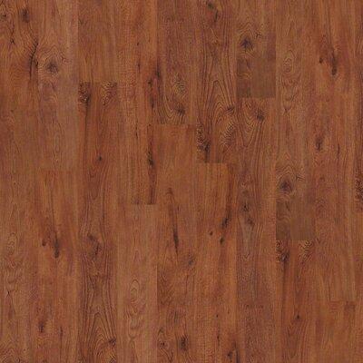"Shaw Floors New Market 12 Array 6"" x 48"" x 2mm Luxury Vinyl Plank in Burlington"