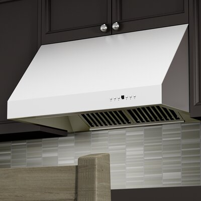 "30"" 1200 CFM Under Cabinet Range Hood in Brushed Product Photo"