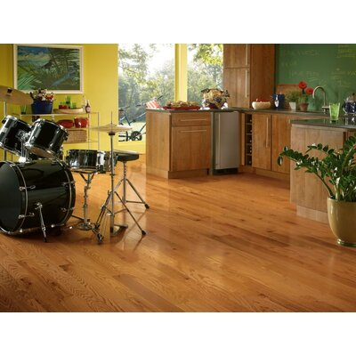 "Forest Valley Flooring 4"" Solid Red Oak Hardwood Flooring in Butterscotch"