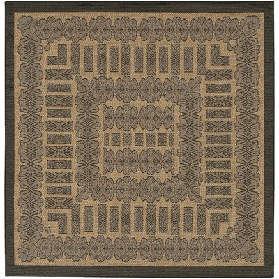 Recife Tamworth Cocoa/Black Indoor/Outdoor Area Rug by Couristan