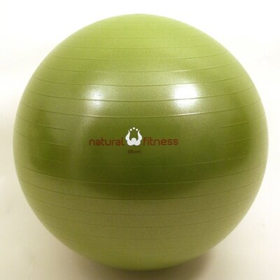 Burst Resistant Exercise Ball by Natural Fitness