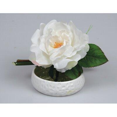 Rose and Bamboo Soapsdish by Jodhpuri