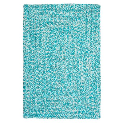 Colonial Mills Catalina Turquoise Indoor/Outdoor Area Rug Rug CA19R