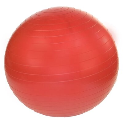 """J Fit 18"""" Professional Exercise Ball"""