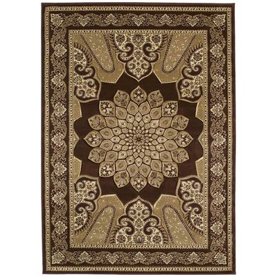 Contours Demetria Chocolate Rug by United Weavers of America