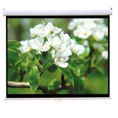 TygerClaw Manual Projection Screen by Homevision Technology