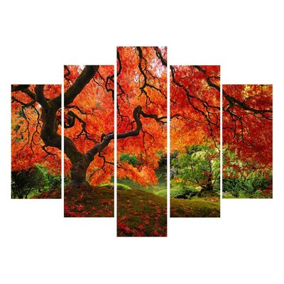 Japanese Maple #2 5 Piece Photographic Print on Wrapped Canvas Set by Elementem Photography